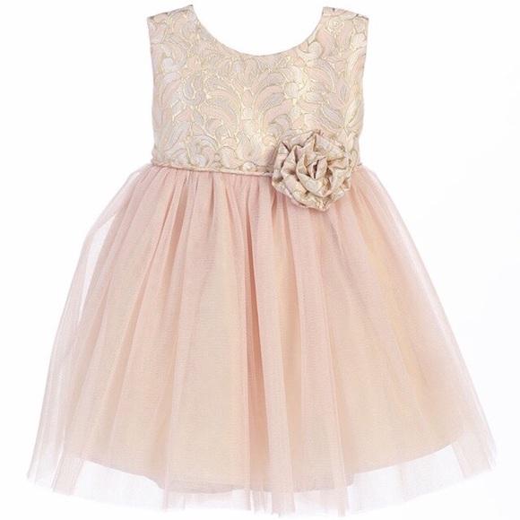 Pink princess dresses flower girl dress in size 6month poshmark pink princess flower girl dress in size 6month mightylinksfo